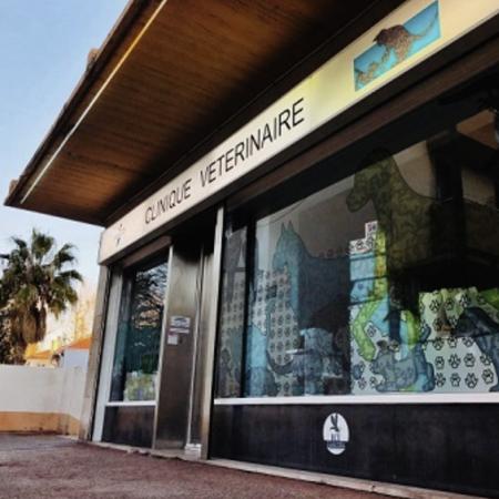 Clinique vétérinaire Saint Barnabé, clinique vétérinaire à Marseille 12ème