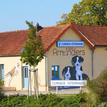 Clinique vétérinaire des Amandiers, établissement vétérinaire à Beaune