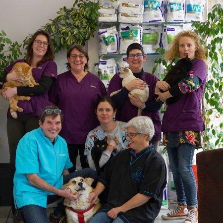 Clinique vétérinaire du Centre, établissement vétérinaire à Villefranche-sur-Saône