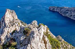 Prendre rendez vous chez un vétérinaire en Provence-Alpes-Côte d'Azur